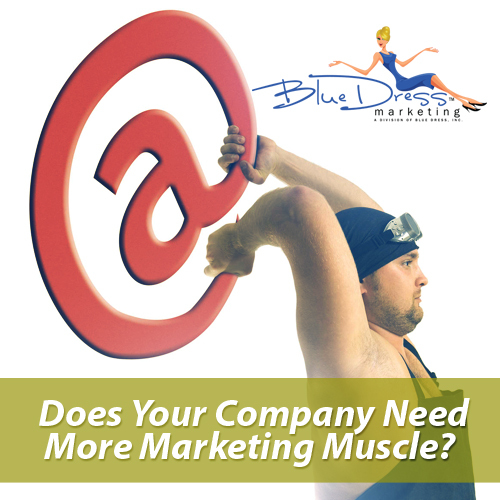 Blue Dress Internet Marketing Company internet marketing consultant - marketing muscle